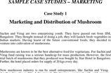 Marketing Case Study Template