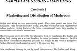Marketing Case Study Template