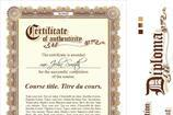 Certificate of Authenticity Templates
