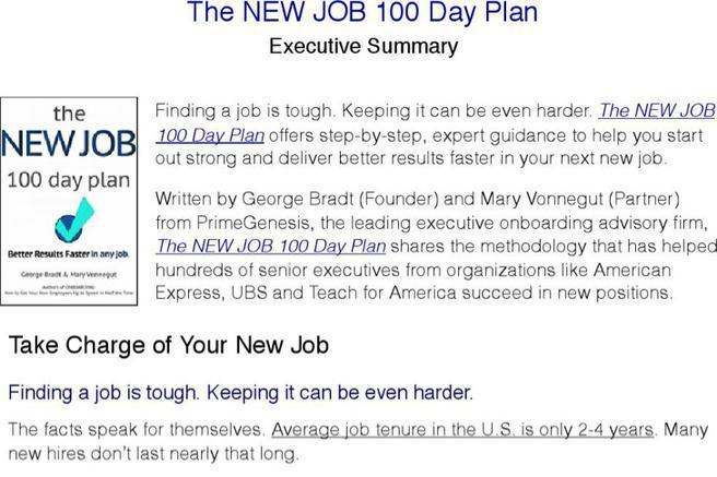 4  sample 100 day plan templates free download