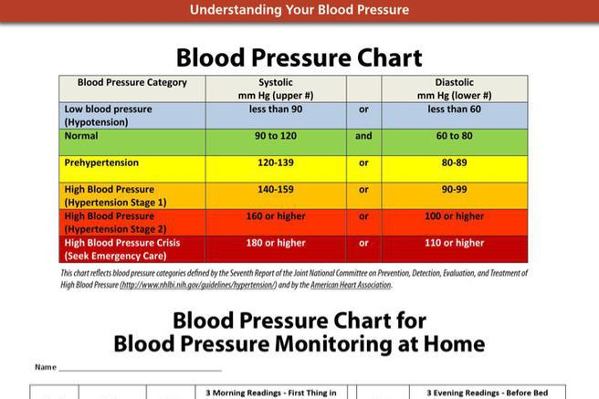 7  blood pressure chart templates free download
