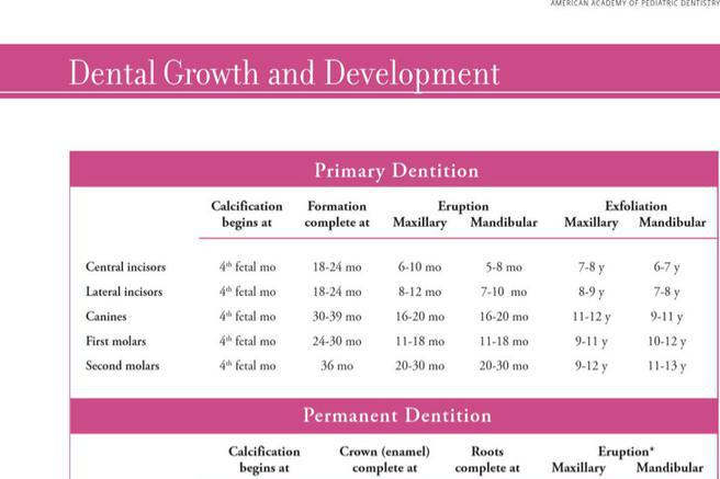 Download Baby Growth Chart Template For Free Tidytemplates