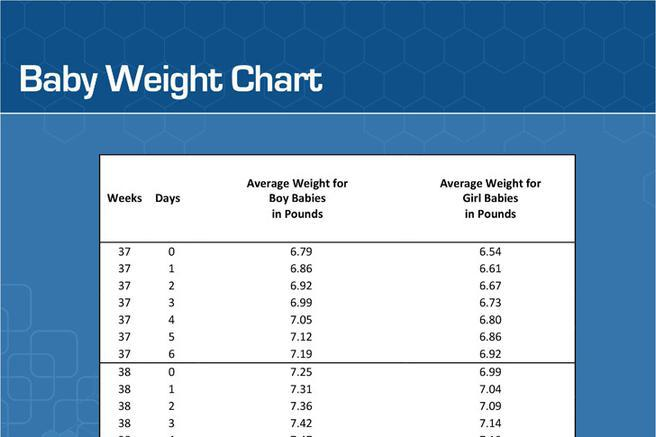 166 Weight Chart Free Download