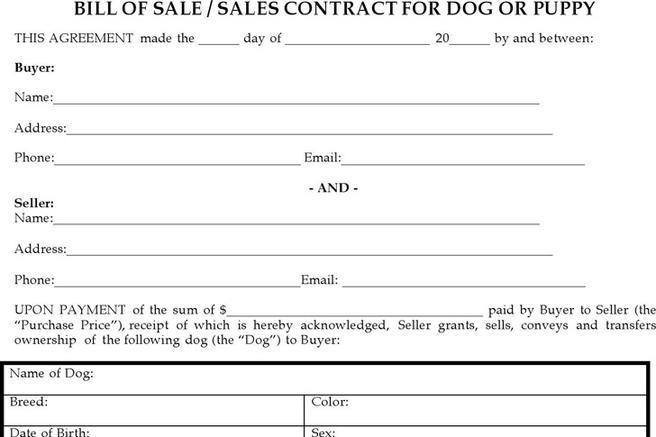 Nevada Dmv Bill Of Sale >> 248+ Bill of Sale Form Free Download