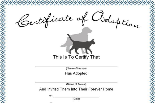 dog certificate template - download dog certificate templates for free tidytemplates