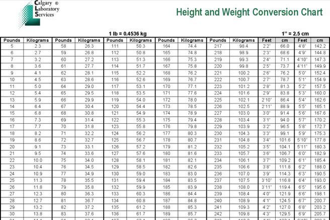 kg to pounds conversion chart pdf