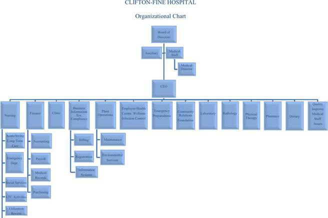 3 Hospital Organizational Chart Free Download