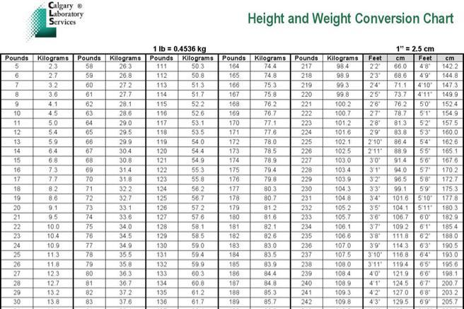 8 Sample Metric Weight Conversion Chart Templates Free Download