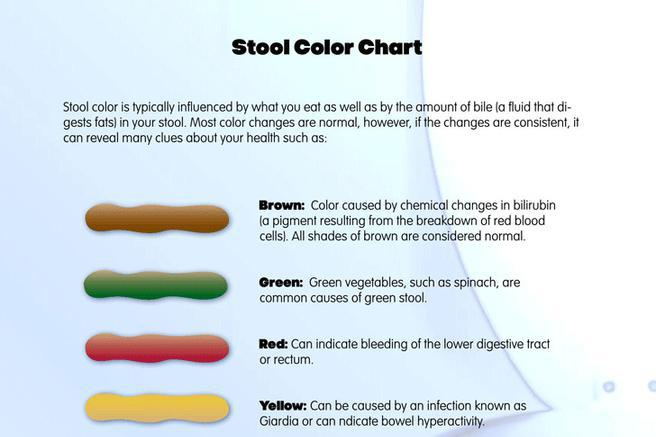 Download Stool Color Chart For Free Tidytemplates