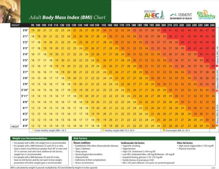 download adult body fat mass index chart sample for free