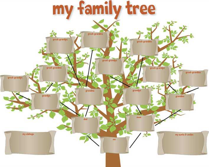 Download Family Tree Template For Kids For Free Tidytemplates