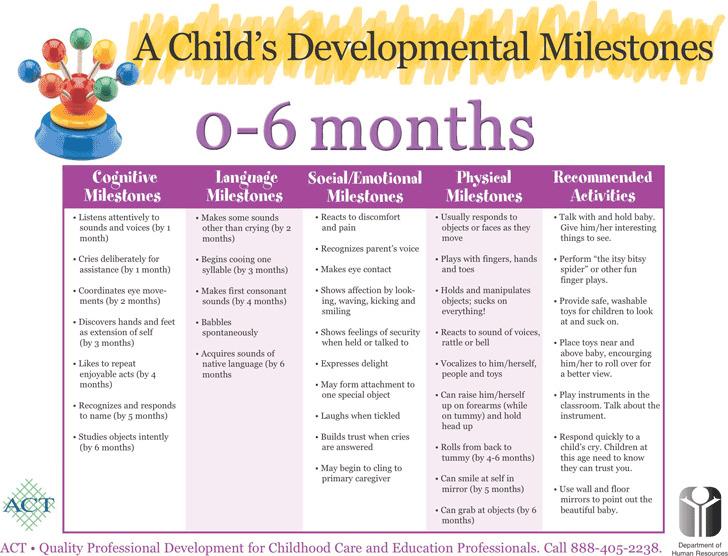 A Child's Developmental Milestones