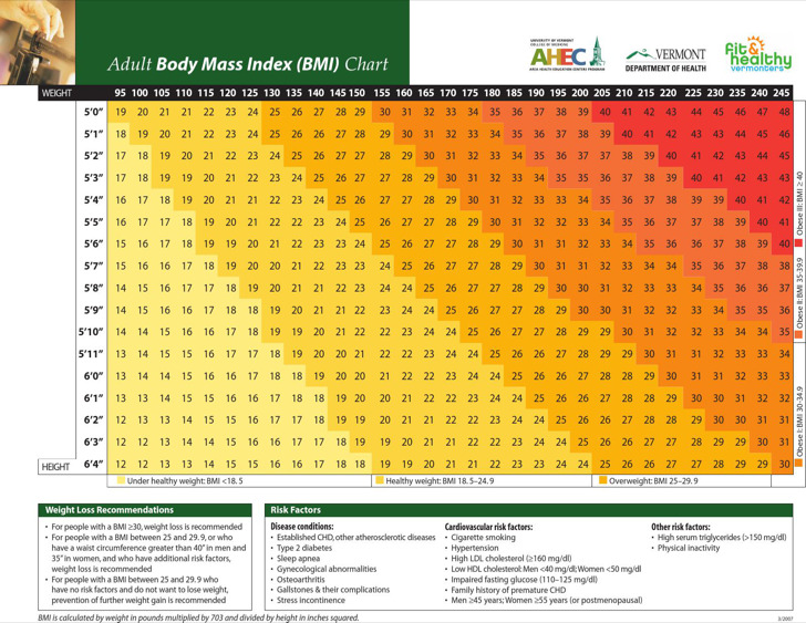 Adult Body Fat Mass Index Chart Sample