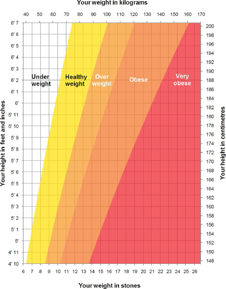 Adult Height Weight Chart