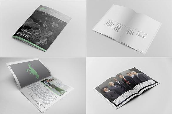 Annual Report Indesign Template For General Purpose