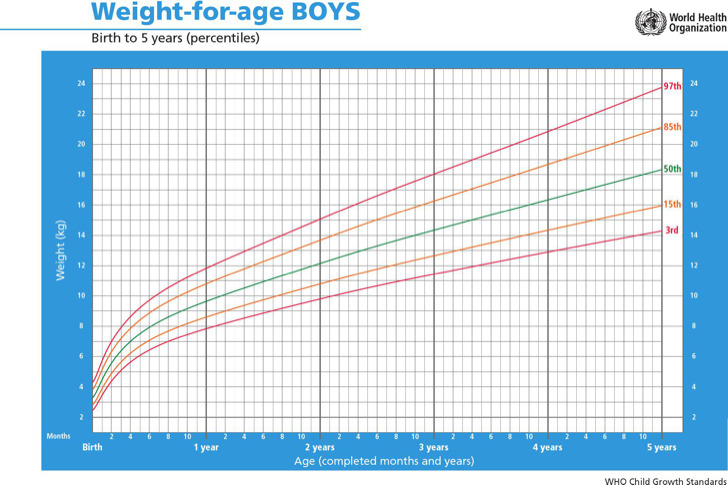 Baby Boy Weight Growth Percentiles Chart
