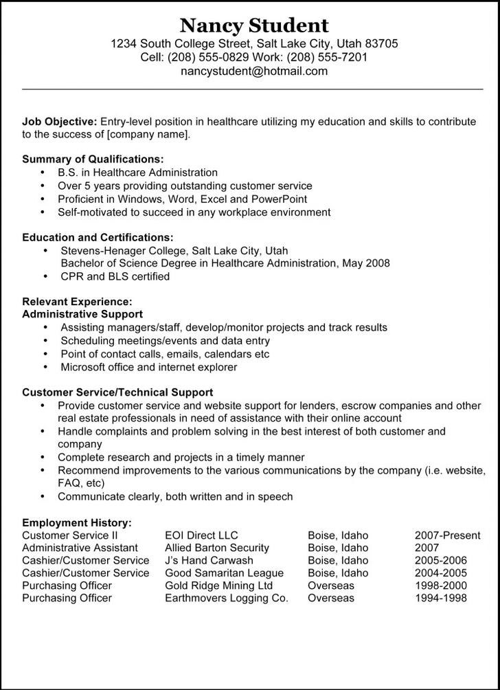 Basic Resume Template Example
