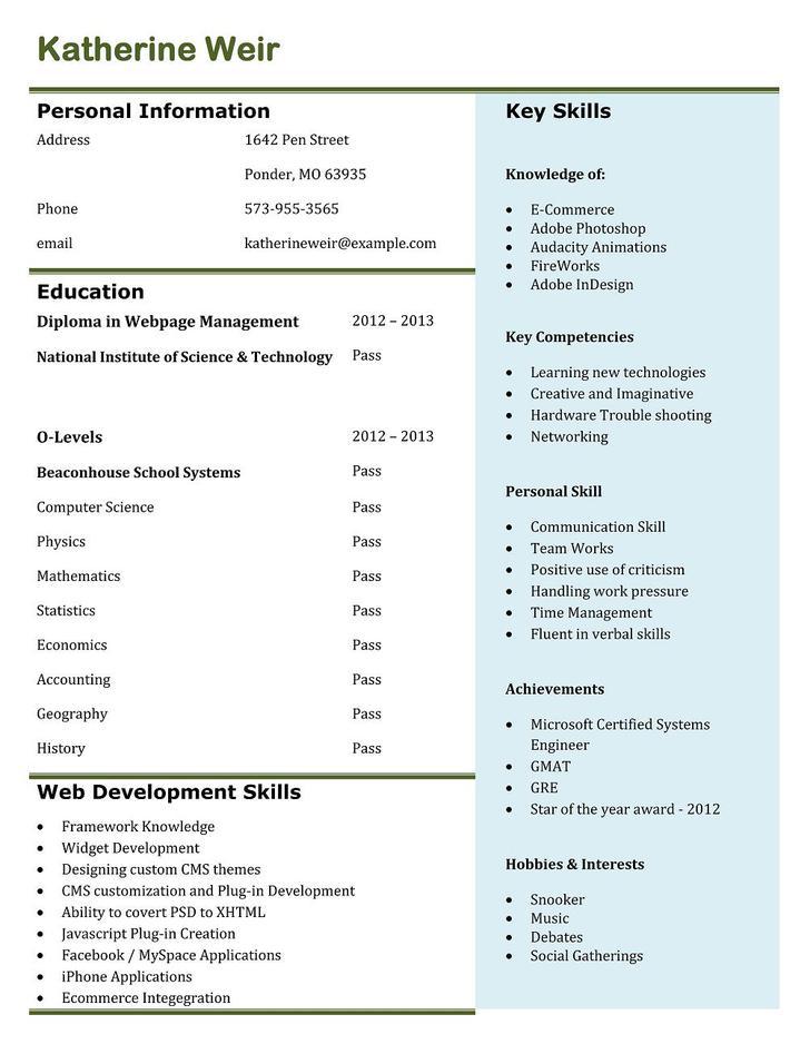 Basic Resume Template for App Developer