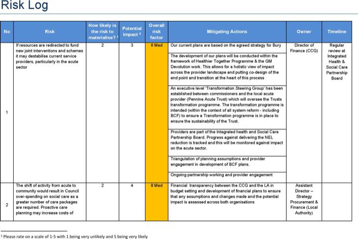 Bcf Risk Log Template