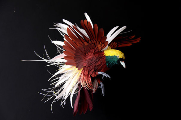 Bird Paper Art Design