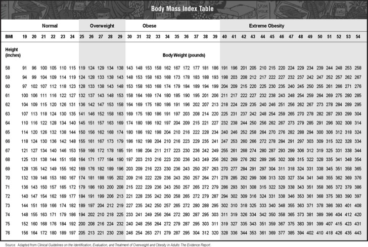 Body Mass Index Chart Table Example