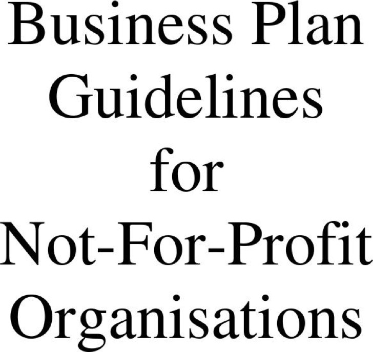 Business Plan Guidelines For Not For Profit Organisation Download