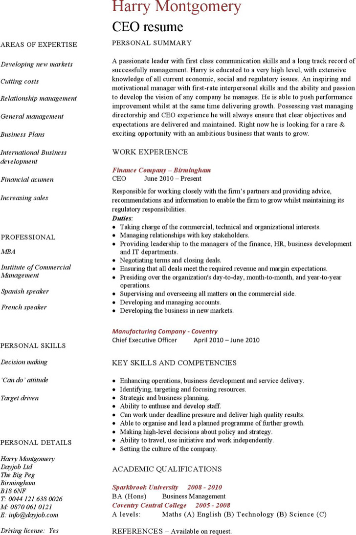 9 Ceo Resume Template Free Download