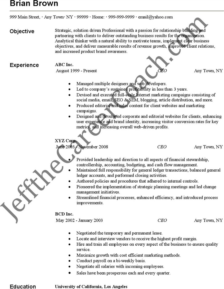 Ceo Resume Free Download