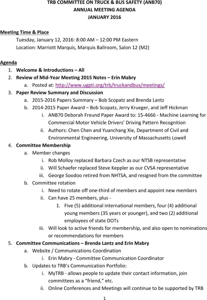 Data Safety Meeting Agenda Template