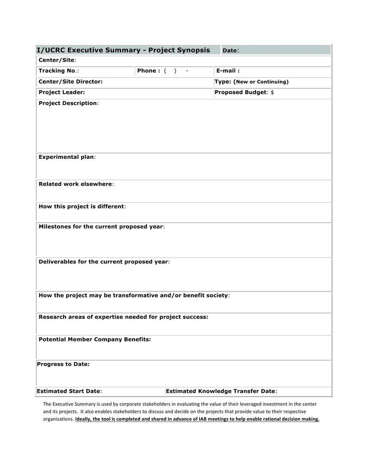 Editable Executive Summary Form Template Sample Word Format