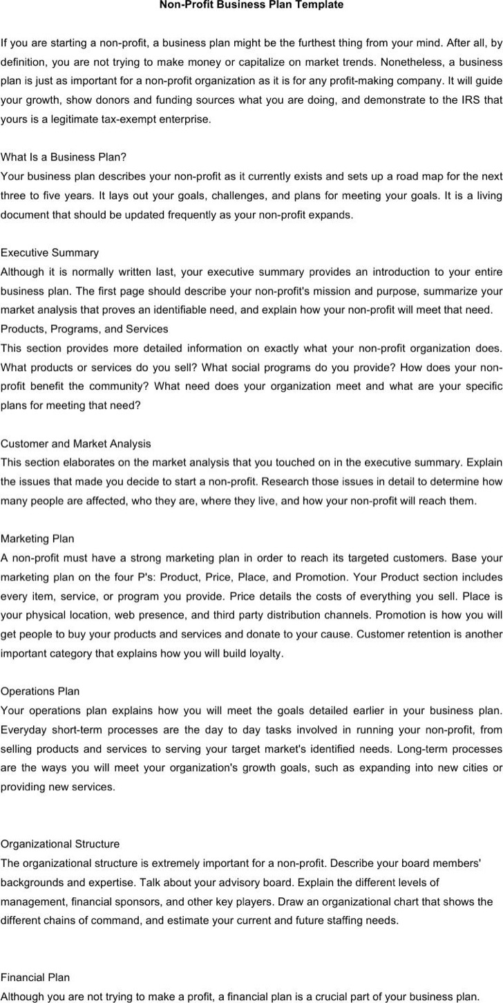 20 Non Profit Business Plan Template Free Download