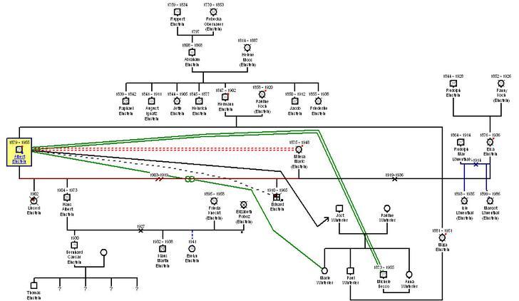 Einstein Genogram Example Template Dowload