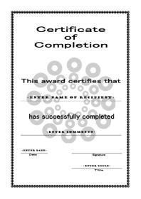 Excellent Execution Certificate Template Word Format