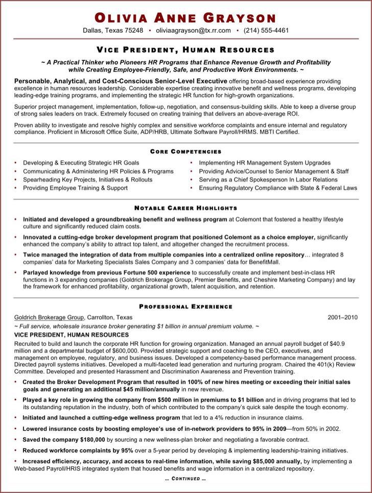 Executive Resume Sample For Hr Vp1