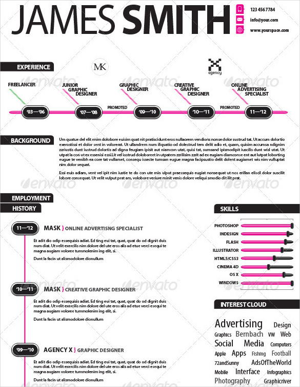 Experienced Infographic Resume Template InDesign Download