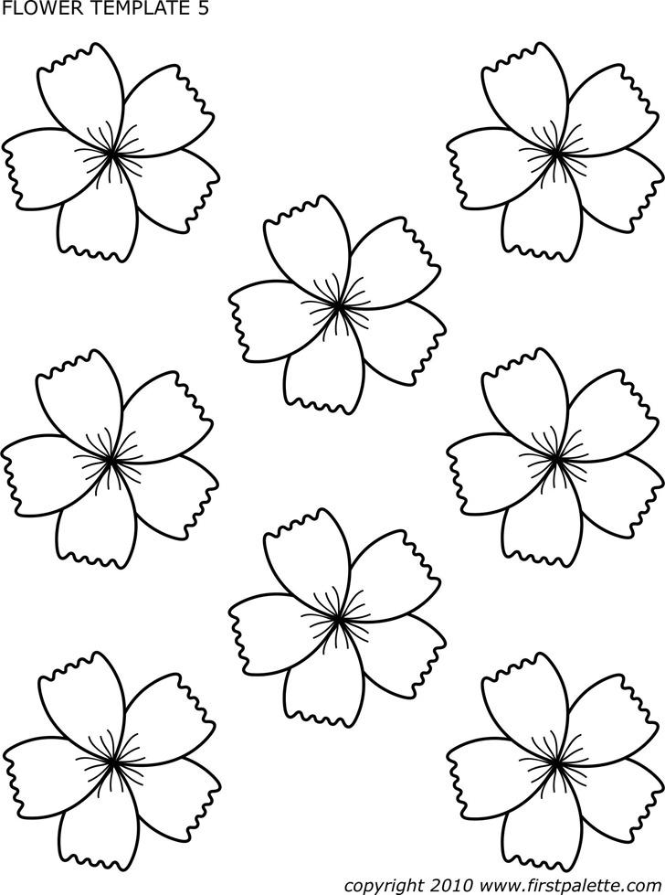 Flower Template 2