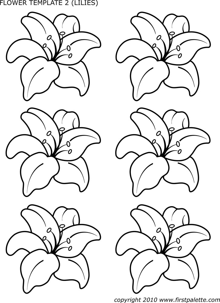 Flower Template of Lilies