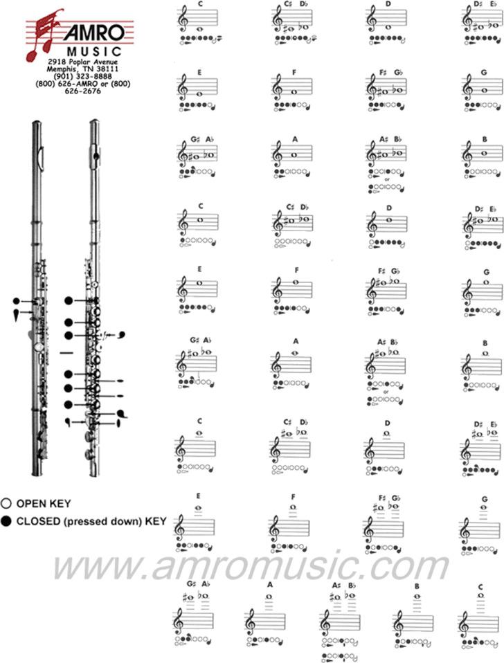 Flute Fingering Chart 1