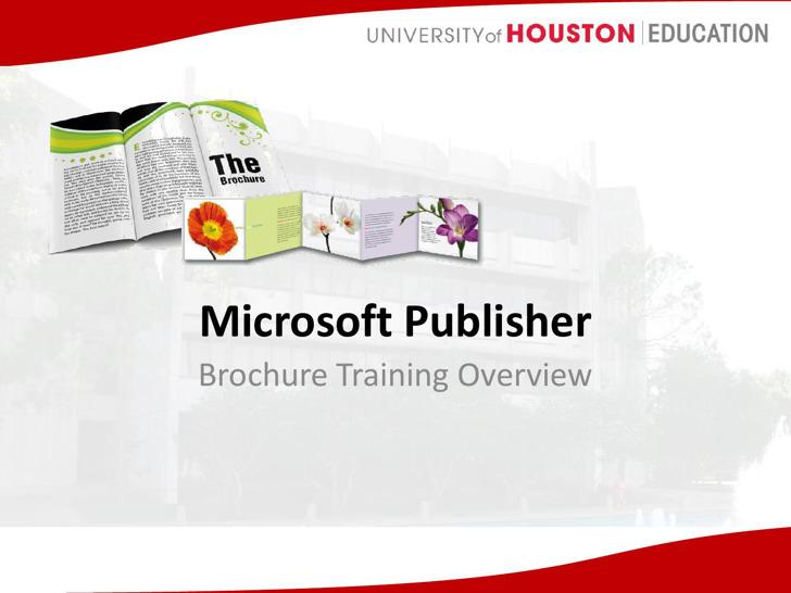 Free Download Microsoft Publisher Brochure Pdf Template