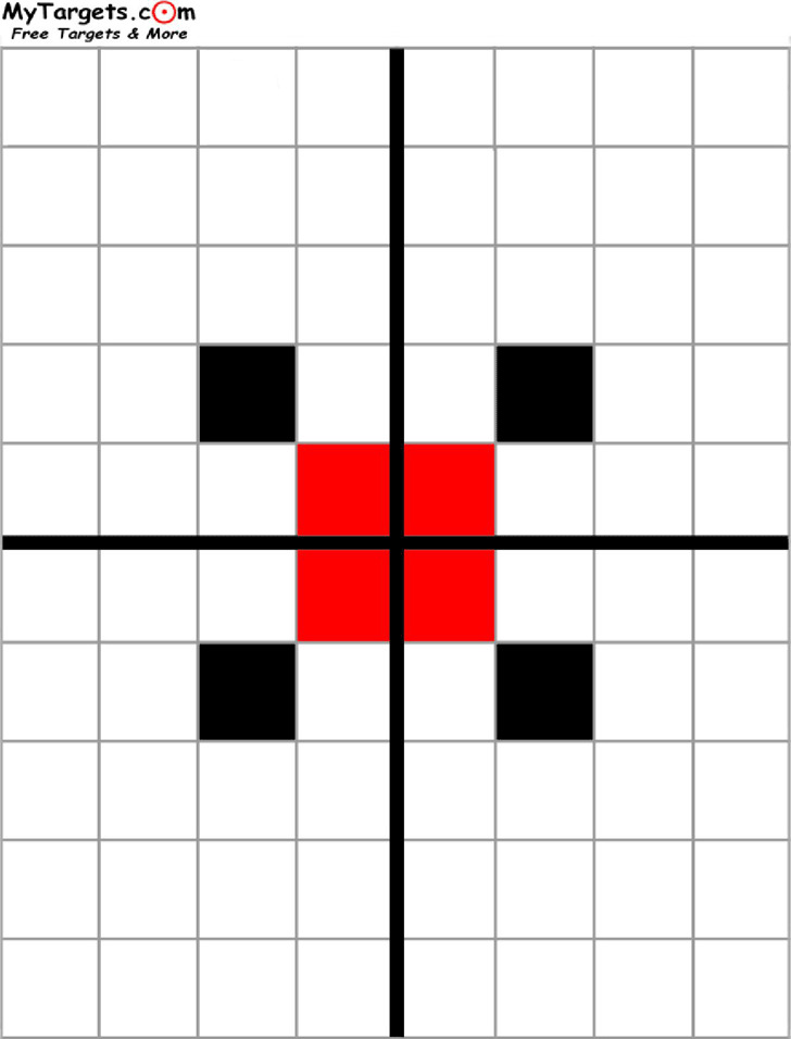 Grid Target With Sight Alignment Aid
