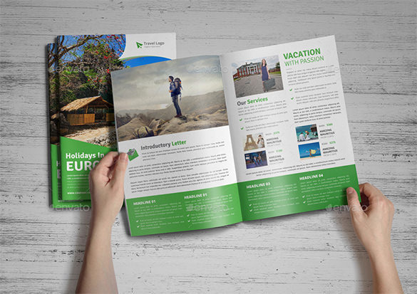 Holiday Travel Agency Bifold and Trifold Brochure