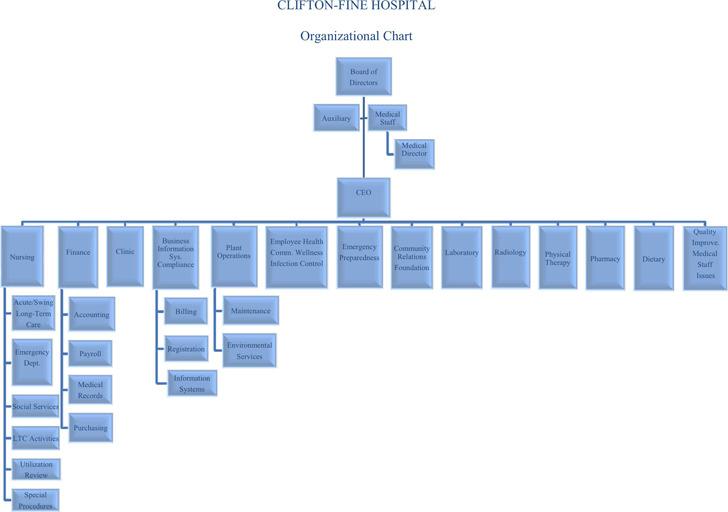 Hospital Organizational Chart 1