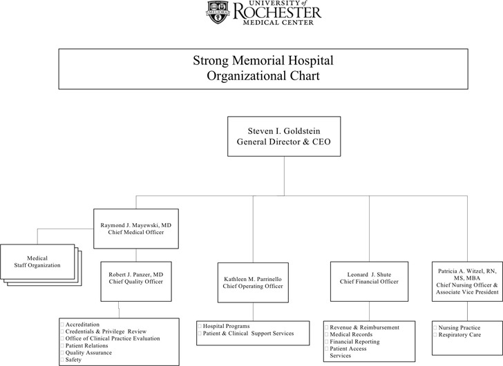 Hospital Organizational Chart 3