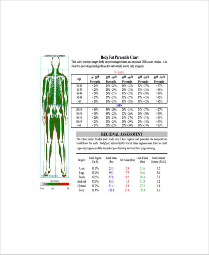 Ideal Body Fat Measurement For Gender