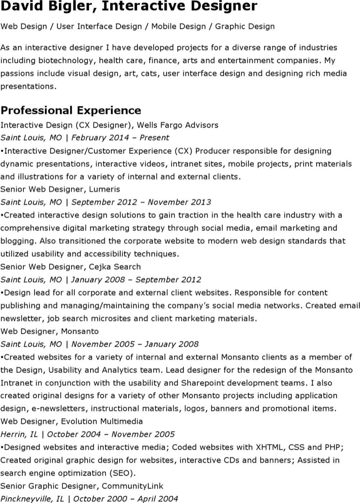Interactive Designer Resume