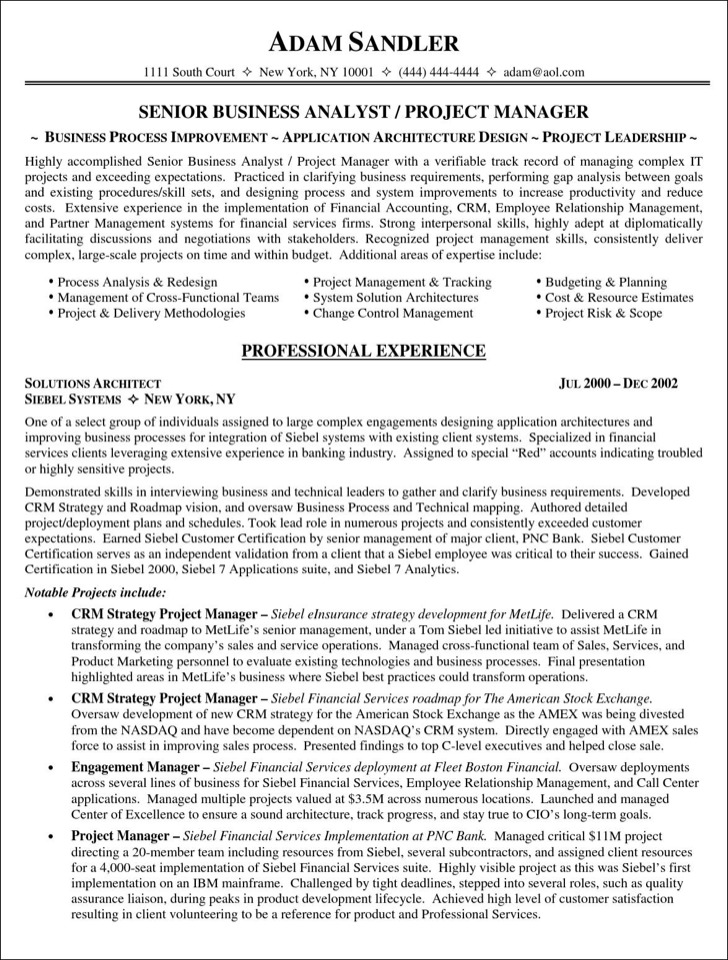 It Project Manager Resume Pdf Free Template