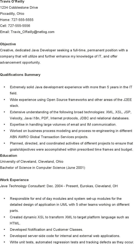Java Developer Sample Resume Template