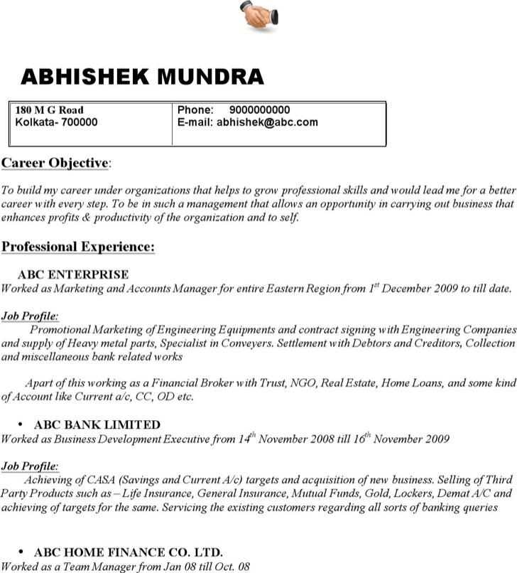 Marketing Accounts Manager Resume