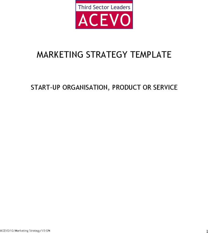 Marketing Strategy Template2 1