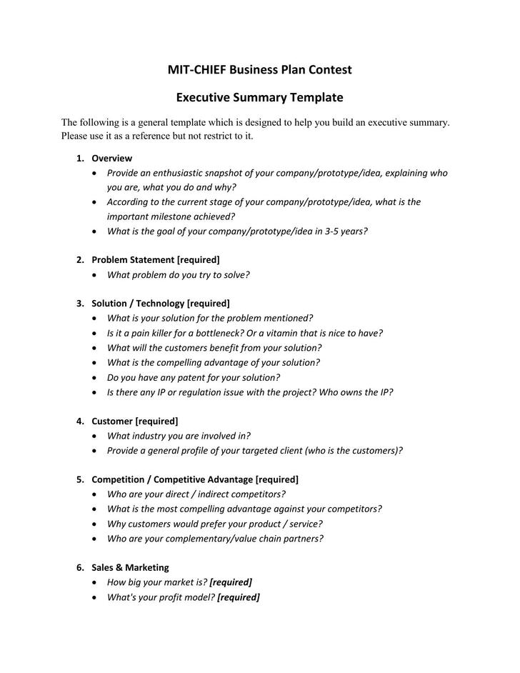 MIT-CHIEF Executive Summary Template Sample PDF Format